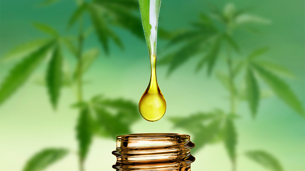 What is CBD/Cannabidiol?